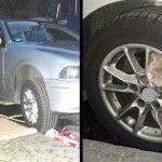 Un gato atrapado en la rueda