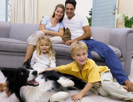 las-mascotas-en-la-familia.jpg