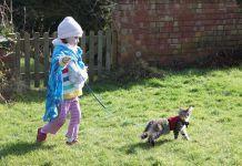 Paseando a un gato con correa