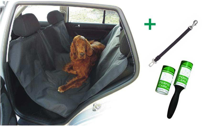 Pack perros viajar en coche