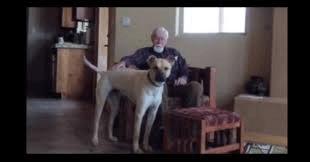 Perro con hombre con Alzehimer