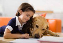 Convivencia de perros y niños