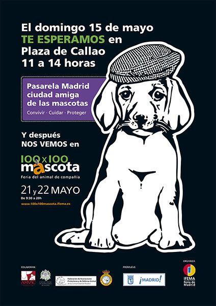 100 x 100 Mascotas en Madrid