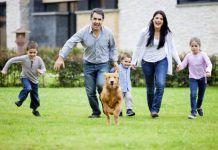 Perro feliz en una familia