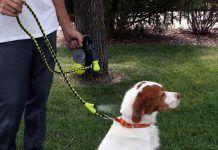 Hyper Pet Cool Down Doggie