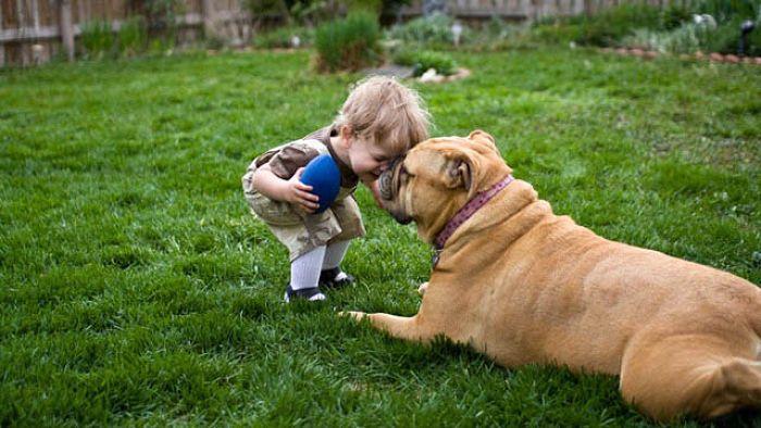 Un perro con su niño