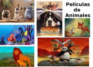 Películas de animales